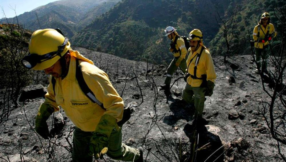 Un incendio forestal declarado alrededor de las 16:30 horas de esta tarde permanece activo en la localidad malagueña de Jimera de Líbar, donde se trabaja en su extinción