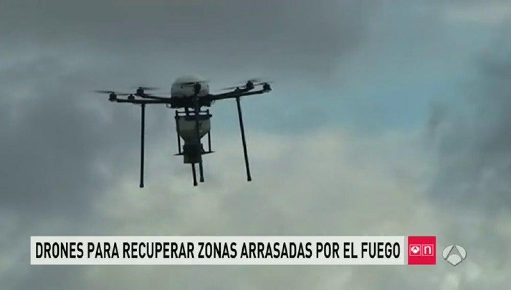 Frame 28.425243 de: drones