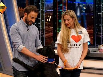 Dani Rovira adopta a uno de los perretes de 'El Hormiguero 3.0'