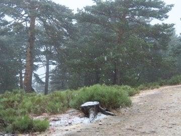Nieve en septiembre en Navacerrada