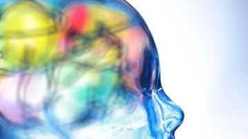 ¿Cómo funciona el cerebro humano?