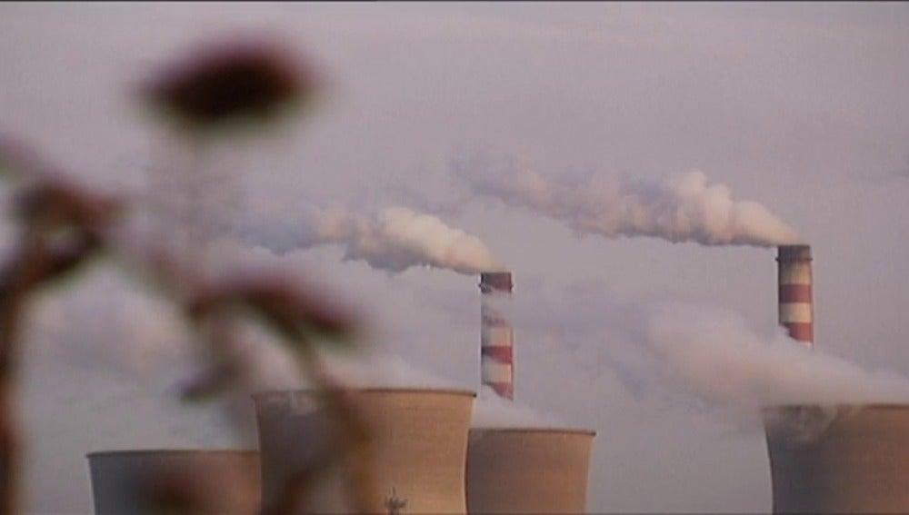 Frame 25.955099 de: Preocupación por las consecuencias para el cambio climático