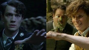 Tom Riddle y Newt Scamander