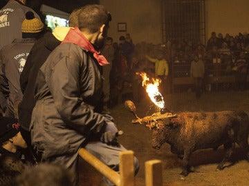 El Toro Jubilo, el único toro de fuego que pervive en Castilla y León