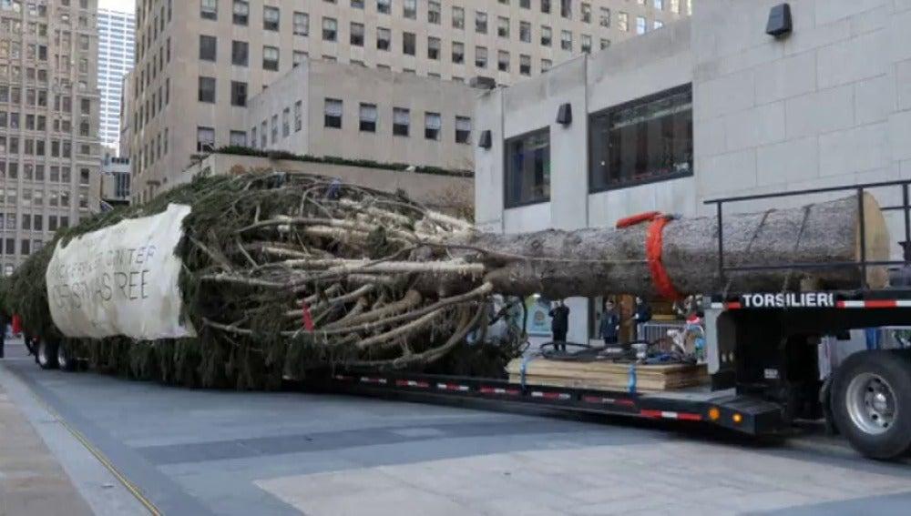 Frame 0.0 de: Instalan el tradicional árbol de Navidad en el Rockefeller Center de Nueva York