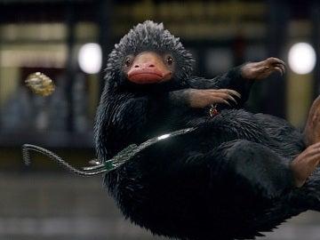 Niffler en 'Animales fantásticos y dónde encontrarlos'