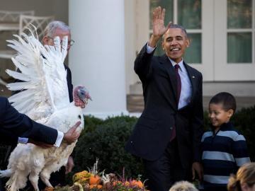 Obama en el tradicional indulto del pavo
