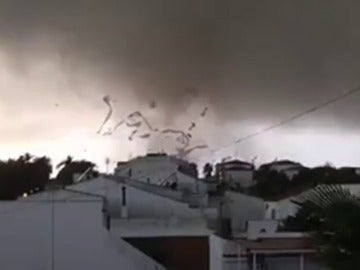 Frame 25.484142 de: Un tornado destruye la estructura de unas 40 hectáreas de fresas entre Palos y Mazagón