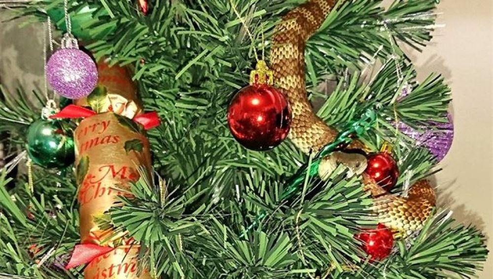 La serpiente en el árbol de Navidad
