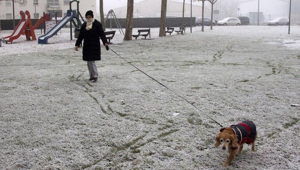 Un parque blanco debido a la cencellada y escarcha helada
