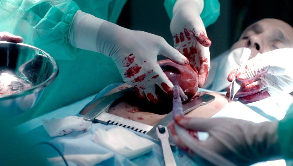 Las 'Pulsaciones' de Rodrigo renacen en el cuerpo de Álex