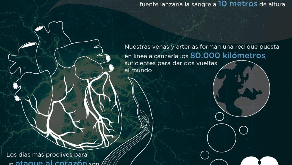 Infografía corazón
