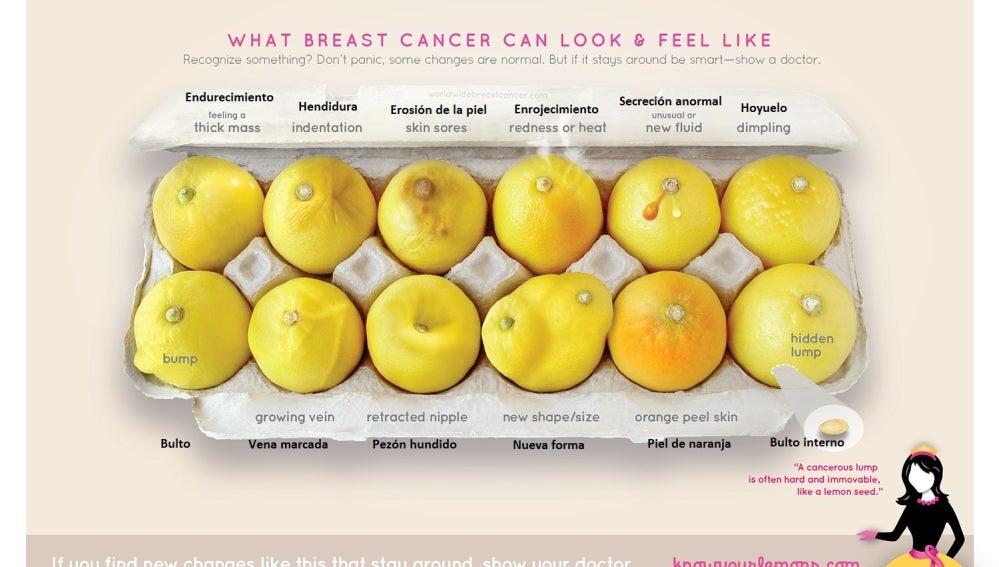 La importancia de estos limones