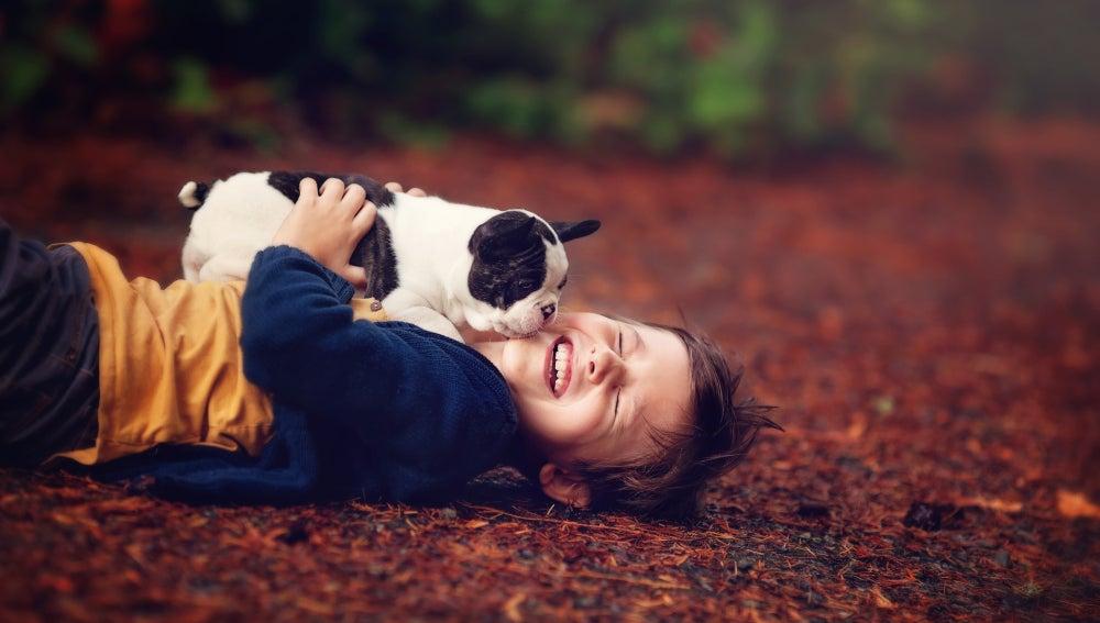 Un niño con su perro