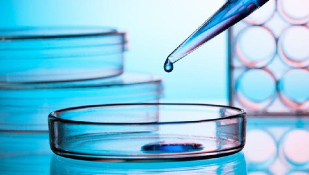 nuevo fármaco inmunológico para pacientes con cáncer de pulmón