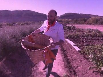 La huerta de Navarra será la nueva despensa de los concursantes de 'Top Chef'