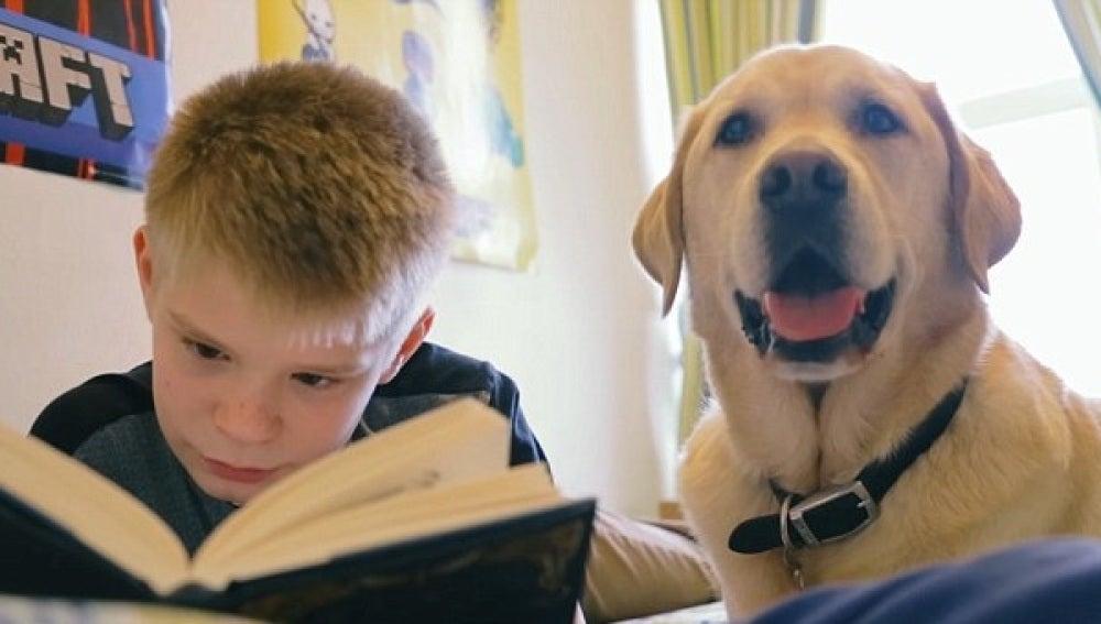 Un niño junto a su perro - Imagen de archivo