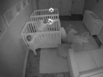 Bebés revoltosos