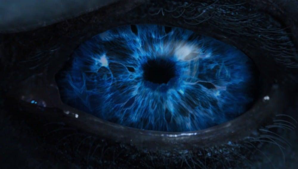 El ojo de un Caminante Blanco