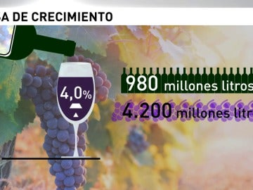 Frame 25.003555 de: Crece el consumo de vino en España