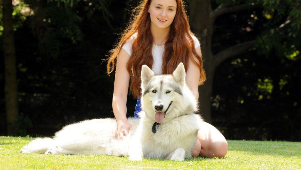 Perro que interpretó al huargo de Sansa