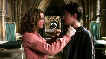 Hermione Granger y Harry Potter