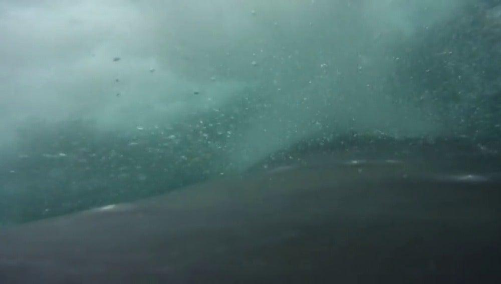 Frame 13.286214 de: Nadando con ballenas en la Antártida