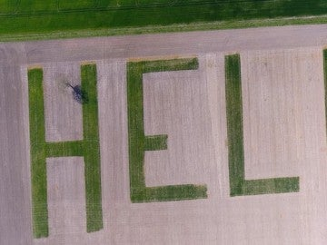 Aparece la palabra Help en un campo de cultivo