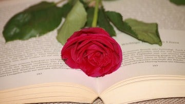 Una rosa roja y un libro, como regalo de Sant Jordi