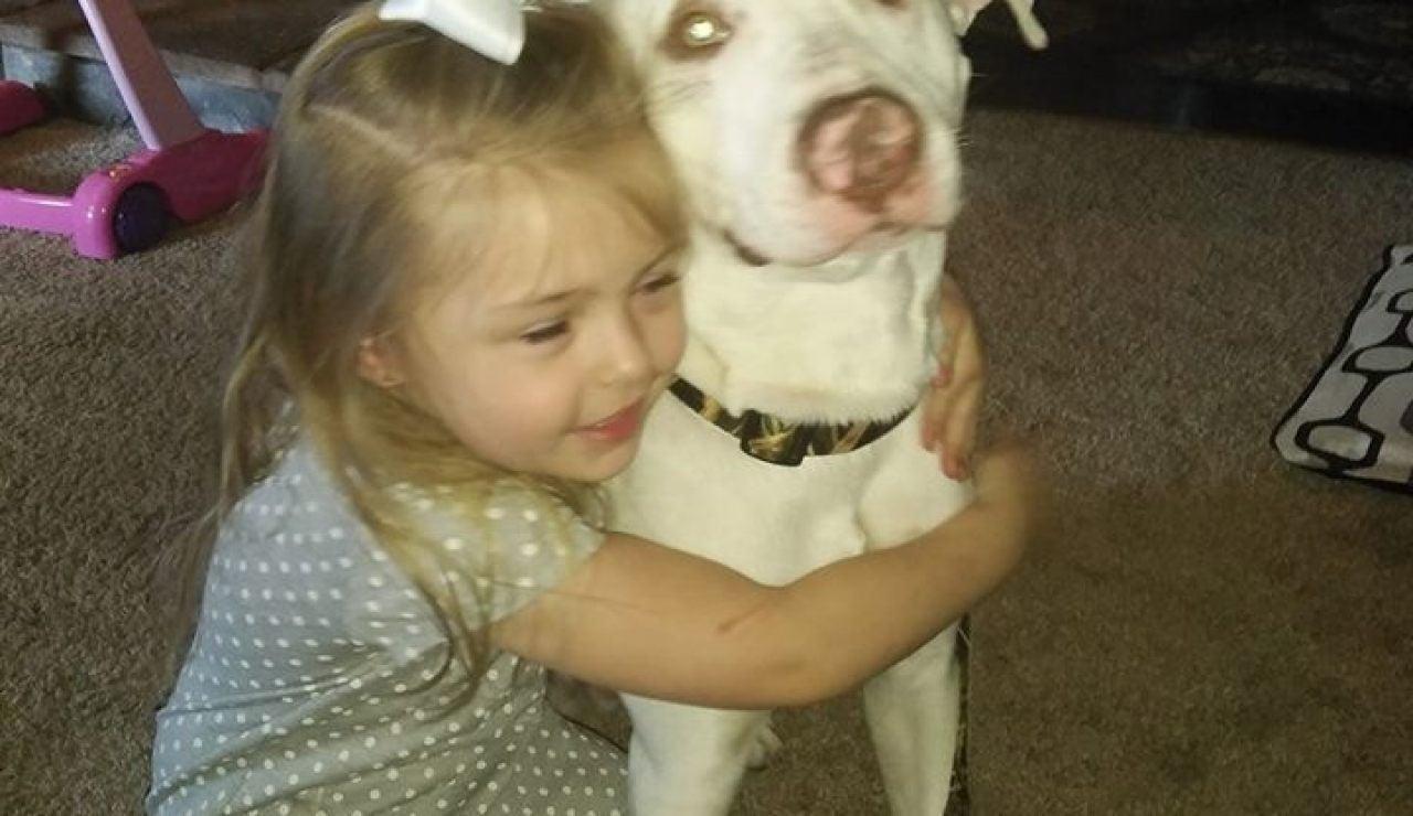 Una niña encuentra a su perro desaparecido gracias a la ayuda de los usuarios de las redes