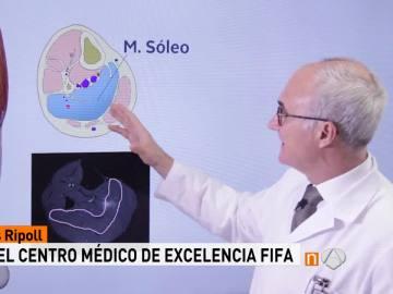 El doctor Pedro Luis Ripoll