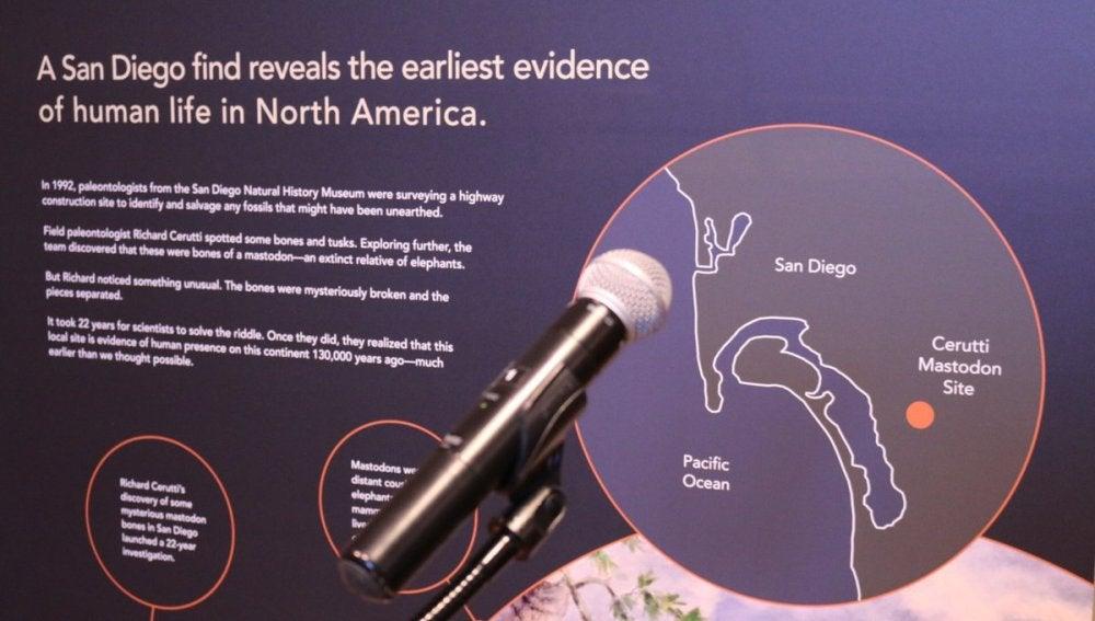 Imagen de la investigación