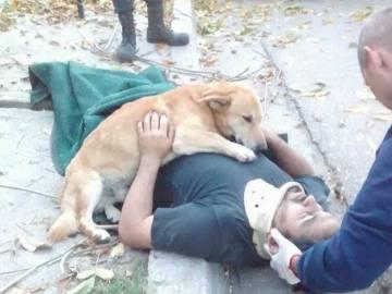 Tony junto a su dueño tras el accidente