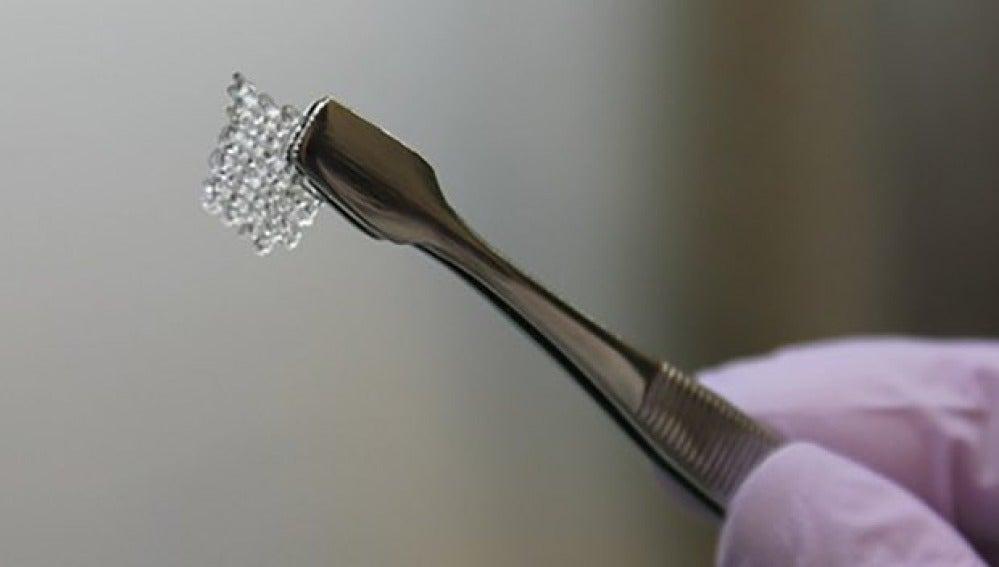 La estructura de un ovario bioprotésico hecho de gelatina