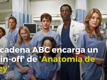 Frame 1.699138 de: La cadena ABC encarga un 'spin-off' de 'Anatomía de Grey' centrado en un parque de bomberos de Seattle