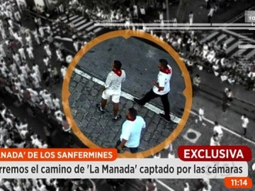 Frame 125.033333 de: Manada_encierro