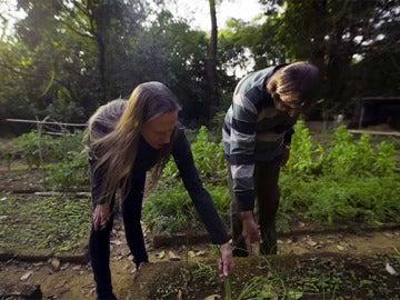El matrimonio replanta la selva deforestada