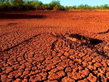 Tierra cuarteada por la sequía