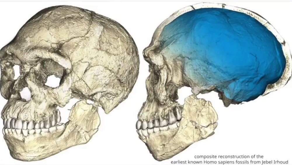 Frame 3.957333 de: Un descubrimiento que cambia el origen de los homínidos: hallan en Marruecos los restos del Homo Sapiens más antiguo del mundo