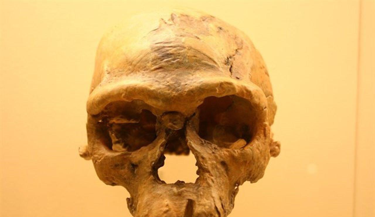 Restos del Homo Sapiens
