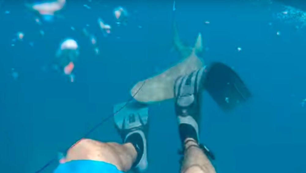 Un tiburón ataca a un joven cuando intentaba pescar