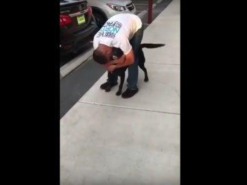Se reencuentra con su perro tras seis años