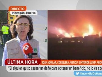 Rosa Aguilar, consejera de Justicia e Interior de la Junta de Andalucía