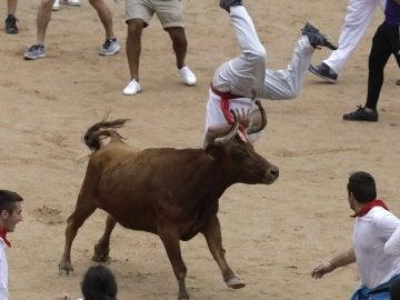 Imagen de archivo de una vaquilla