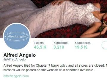 Cuenta de Twitter de la firma Alfred Angelo