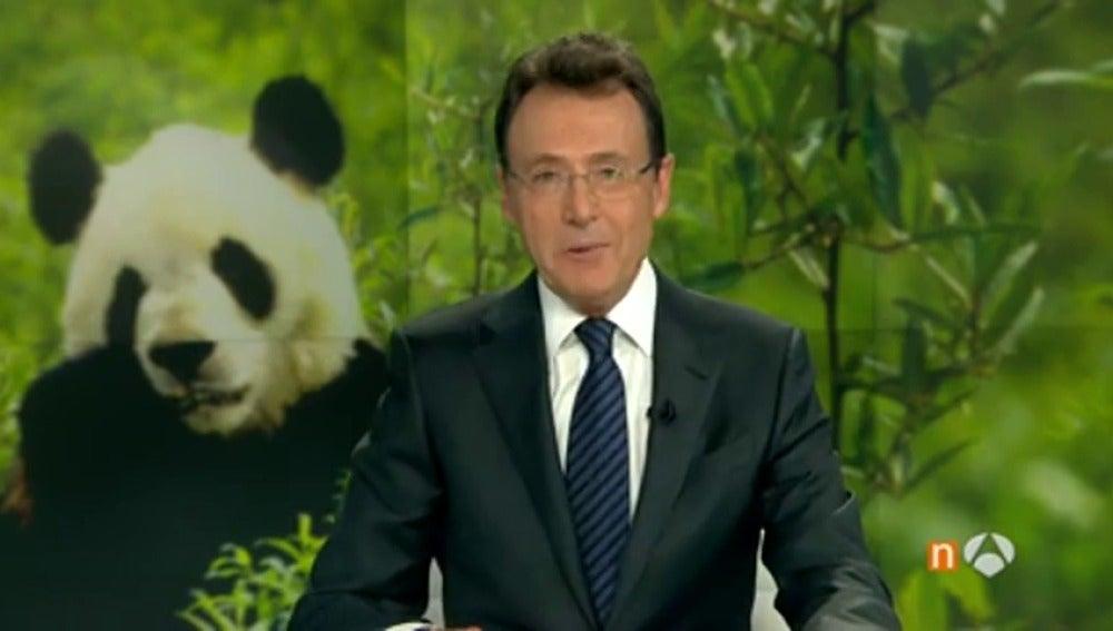 """¡Vaya panda!"", el chiste de Matías Prats"