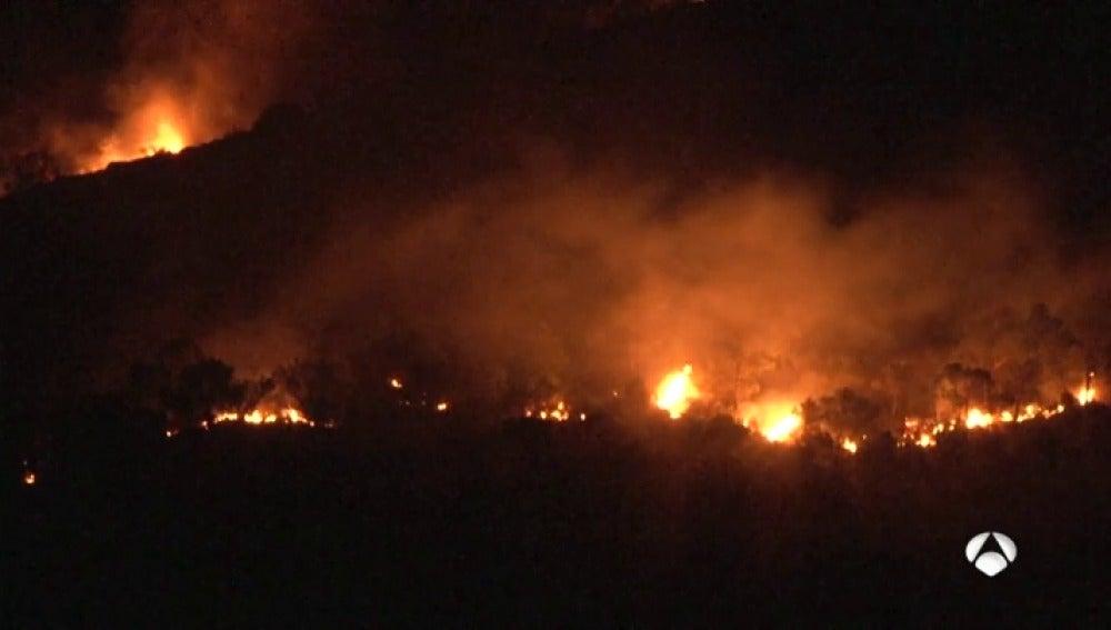 Estabilizado el incendio forestal declarado en la Sierra de San Miguel de Calasparra