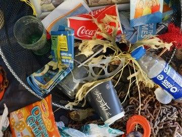Contaminación en playas