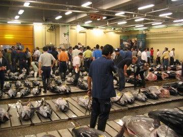 Venta de atún en el mercado Tsukiji