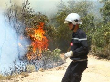 El fuego asfixia Europa (03/08/2017)